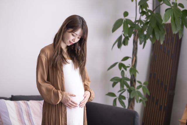 派遣で働いているときに妊娠した場合の報告や手続き
